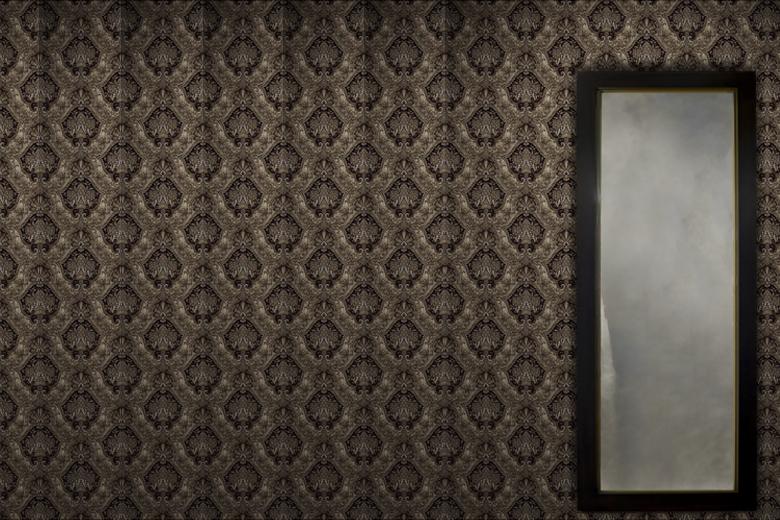 【取り扱い終了】ミラールックバック / ウィリアム・ウォレン