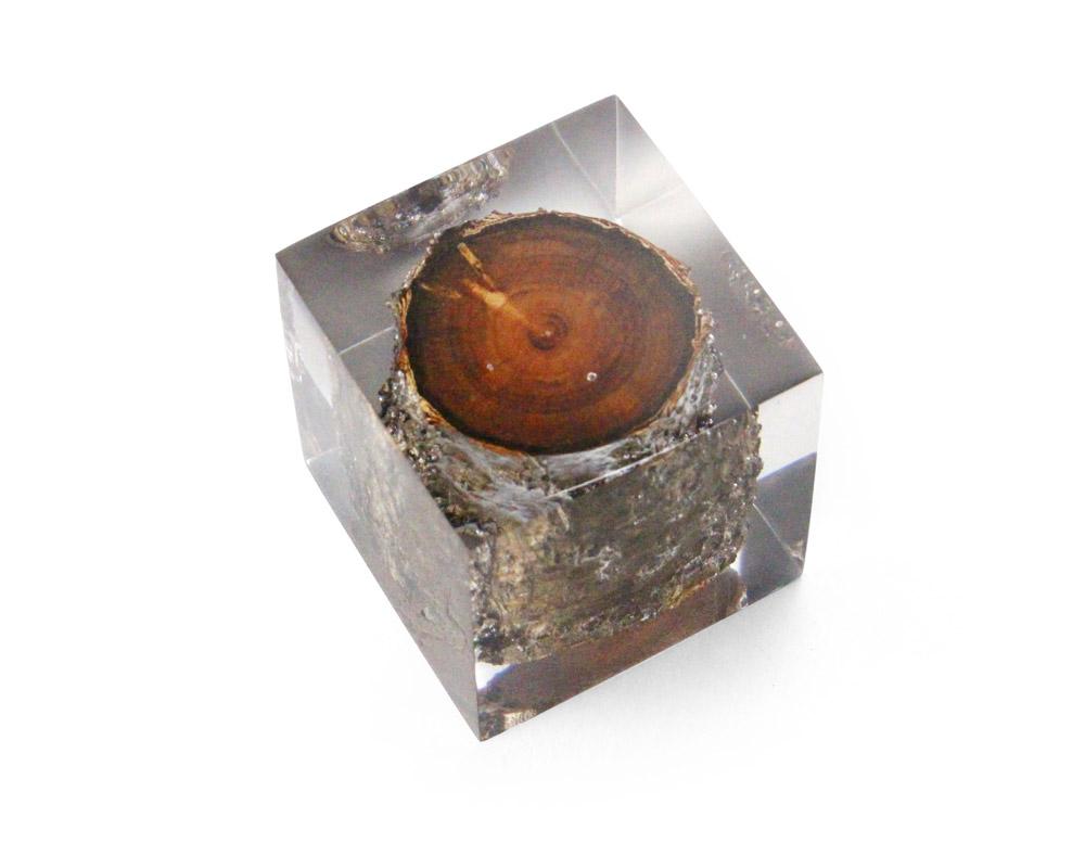 DETAIL | Resin With Wood Inside レジンウィズウッドインサイド