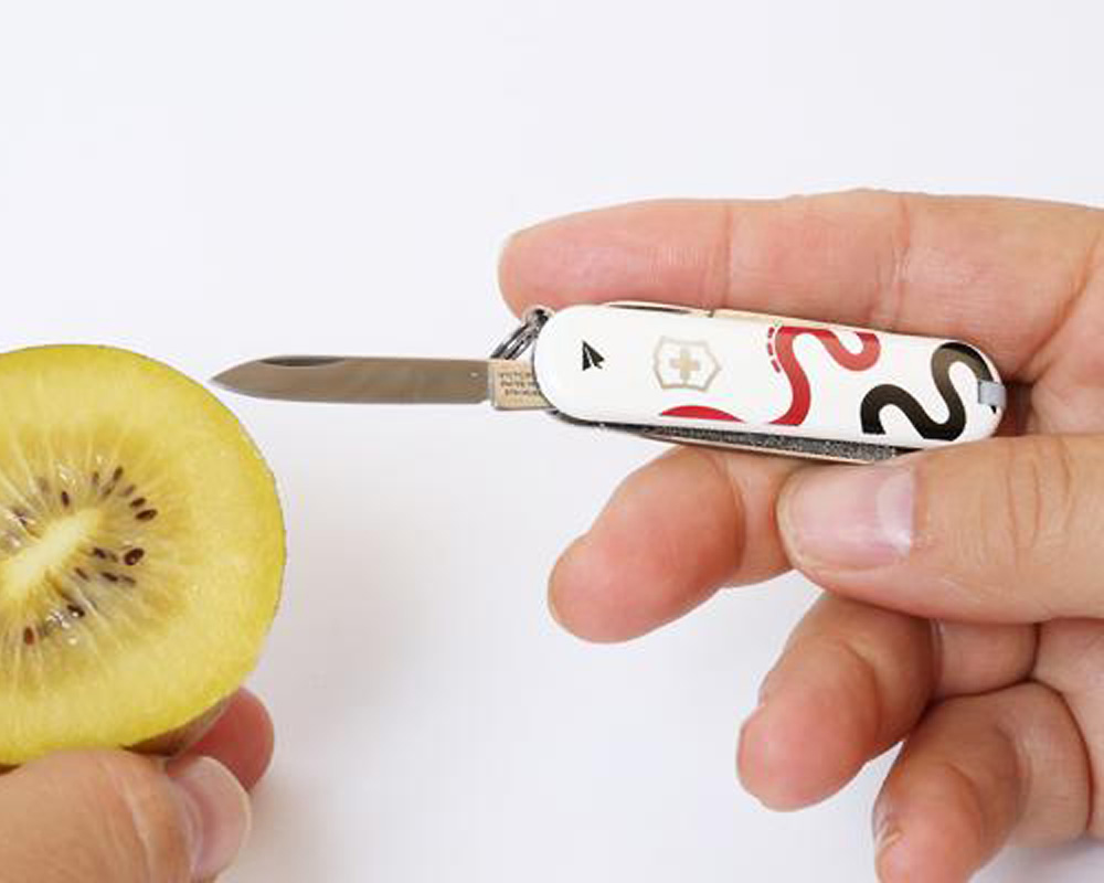 PAPERSKY STORE   Small Pocket Knife ビクトリノックス スモールポケットナイフ