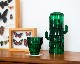DOIY | Saguaro Glasses サワログラス