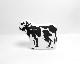 COW BOOKS | Padded Cow / mini  パデッド カウ / ミニ