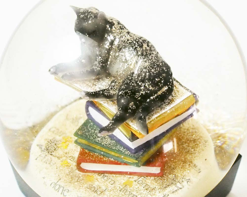 Cool Snow Globes | Snow Dome Cat on Books クールスノーグローブス