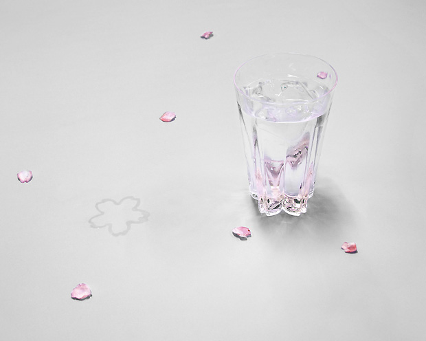 100% | SAKURASAKU glass Rock 紅白set サクラサクグラス ロックグラス紅白セット