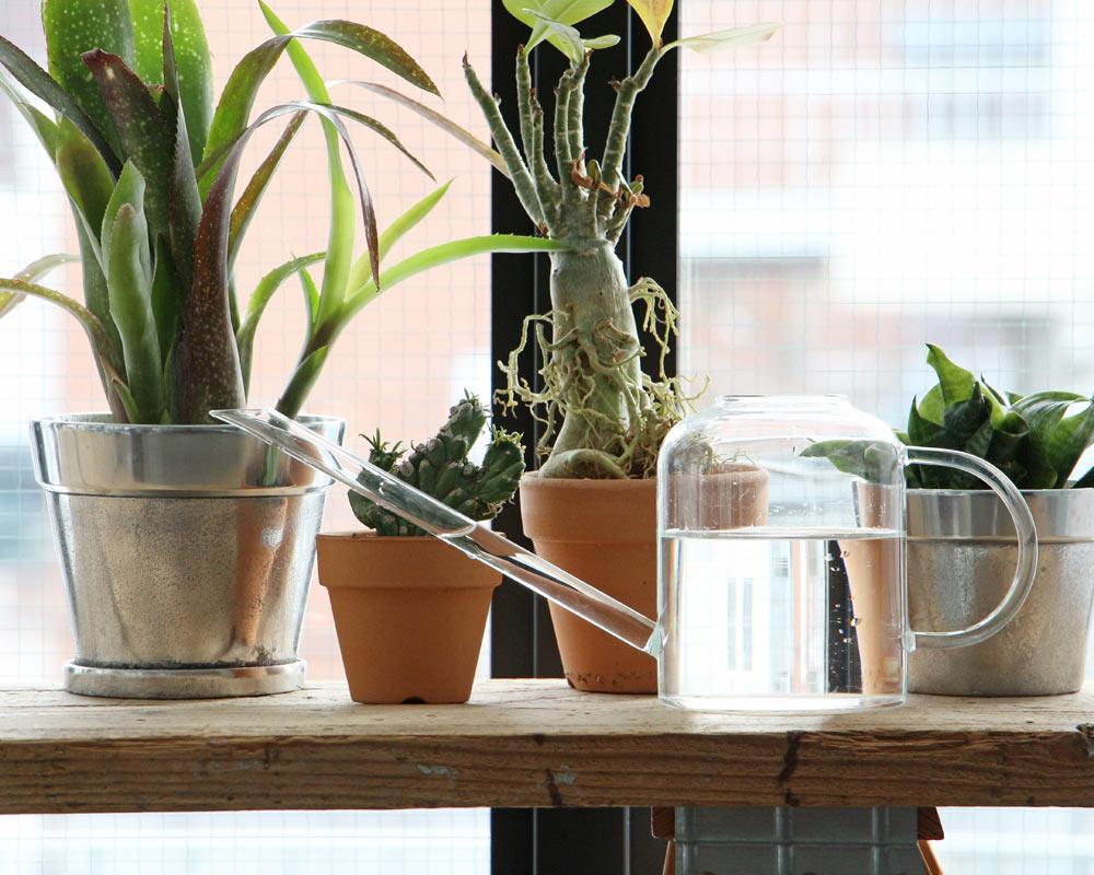 muurla Finland | Glass Watering Can 1.3L グラス ウォータリング カン