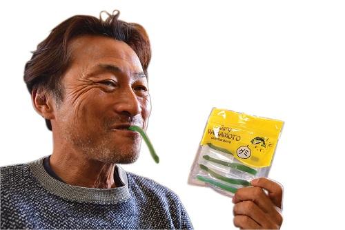 【バラ】ゲーリーグミ・カットテール「No.5ホットピンク(ピーチ風味)」