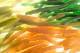 【再入荷】ゲーリーグミ・カットテール3フレーバーセット(ネコポス発送商品)