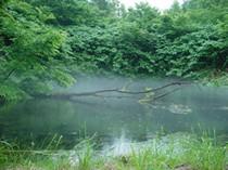 国内最長15年保存水 《カムイワッカ麗水15年》 500mL×24本/箱 【送料無料】【代引不可】