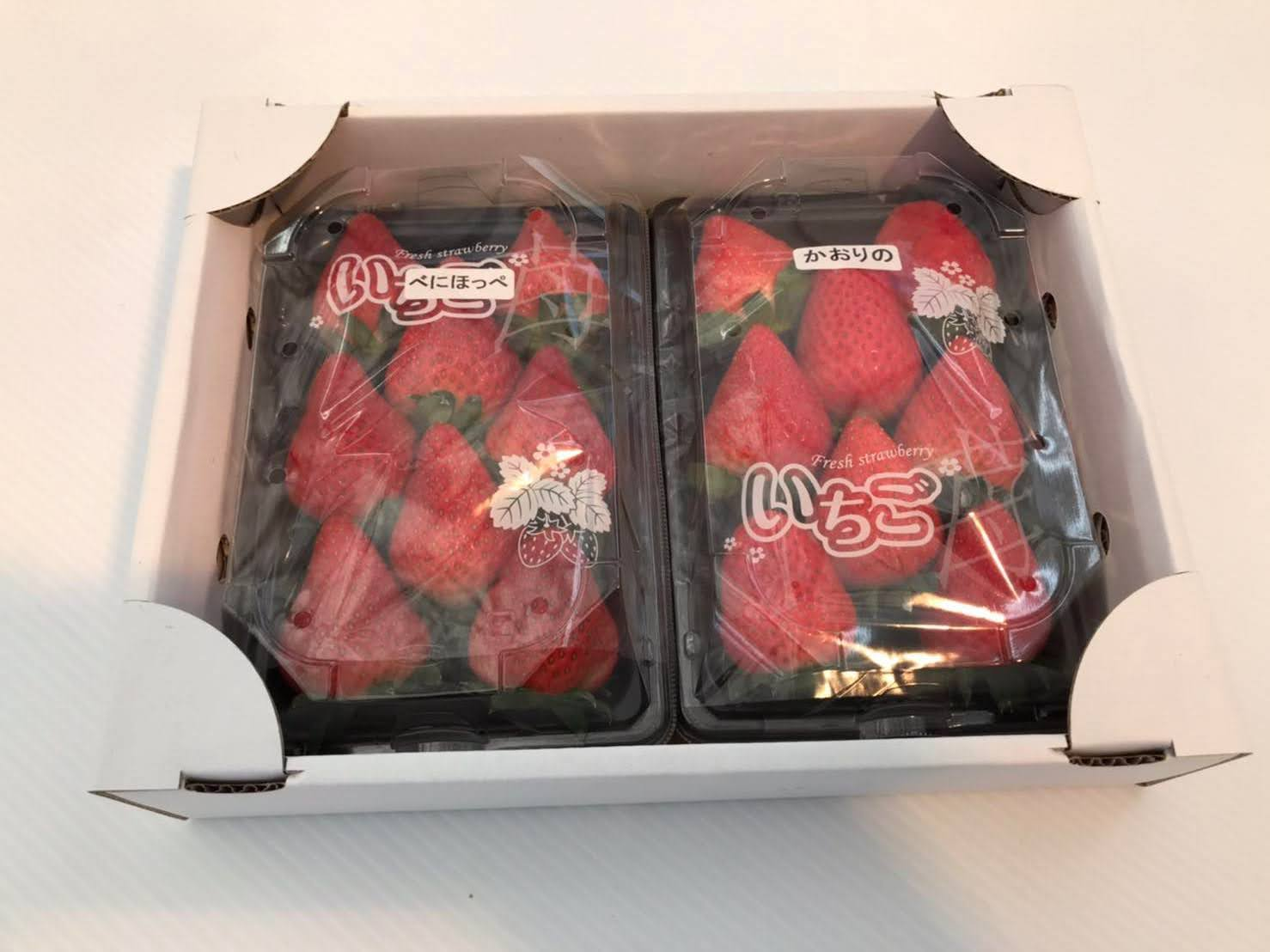 千葉市観光農園の採れたてイチゴ(2パック)