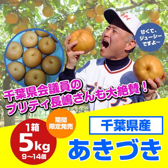 【期間限定】プリティ長嶋さん推薦!千葉県の美味しい梨「あきづき」(5kg)