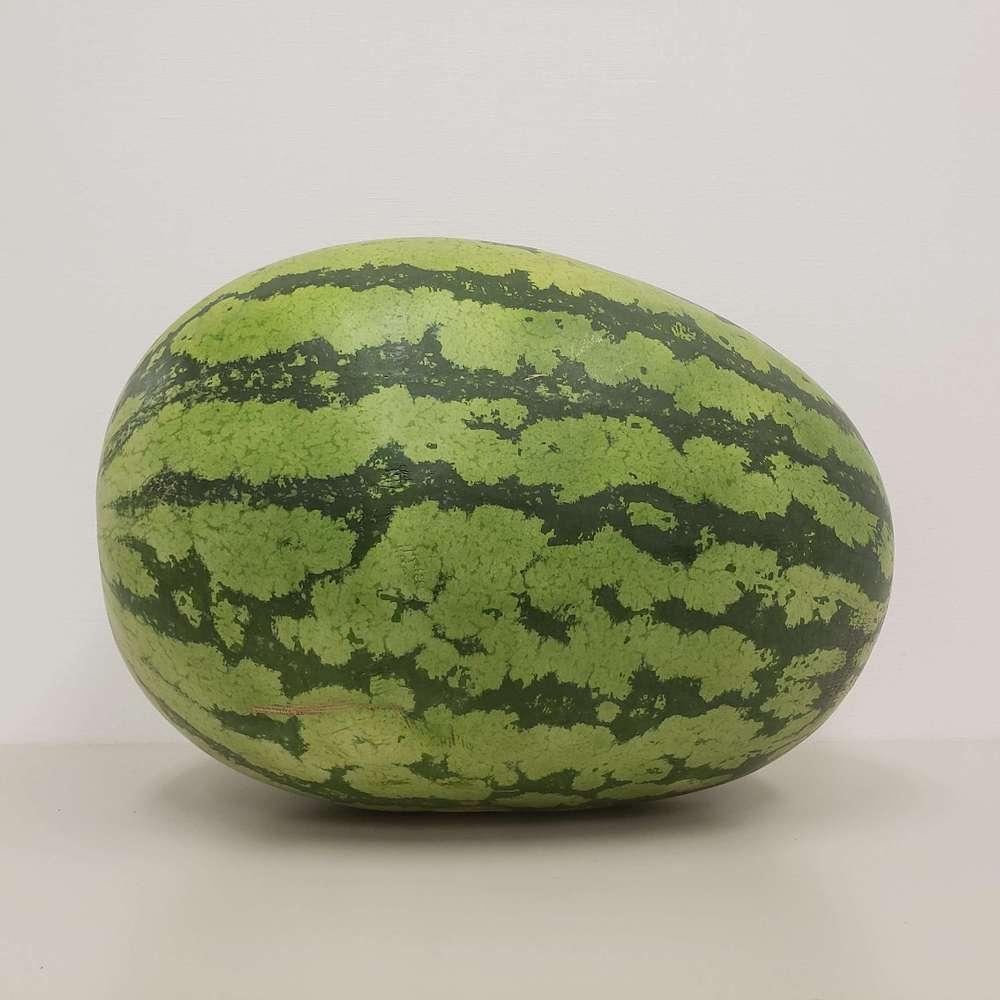 【先着10名様限定】富山特産 入善ジャンボ西瓜(約15kg〜20kg)