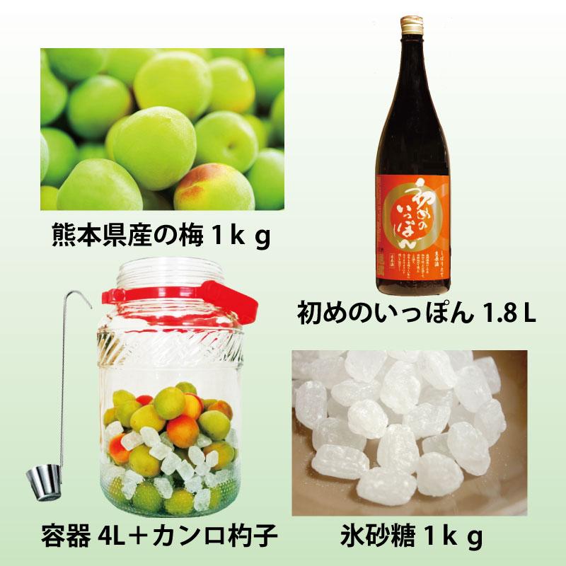 通潤 梅酒キット(保存容器有り)
