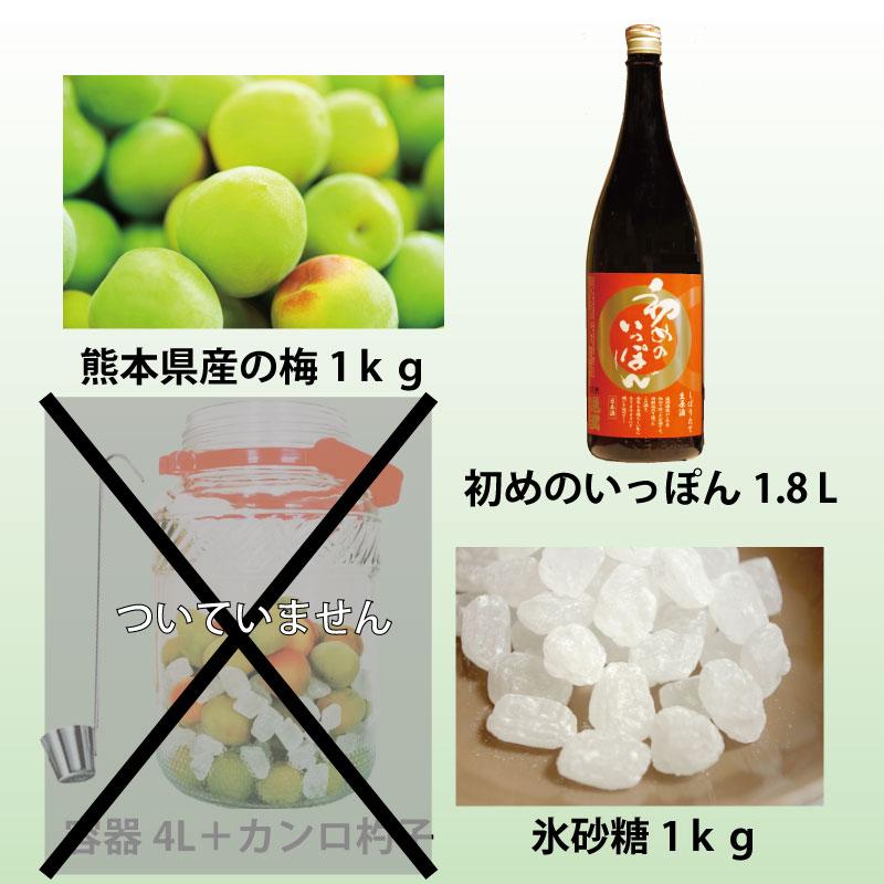 通潤 梅酒キット(保存容器無し)