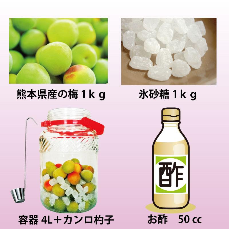 通潤 梅ジュースキット(保存容器有り)