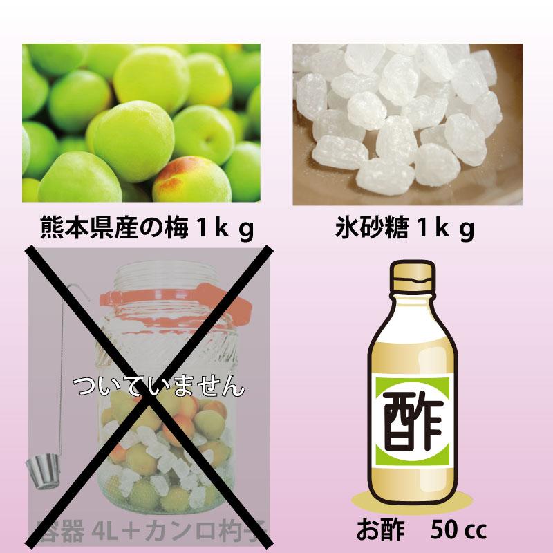 通潤 梅ジュースキット(保存容器無し)
