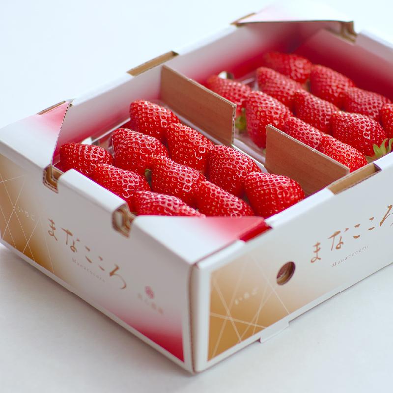まなこころ・葵 280g(2段×2パック) 1箱