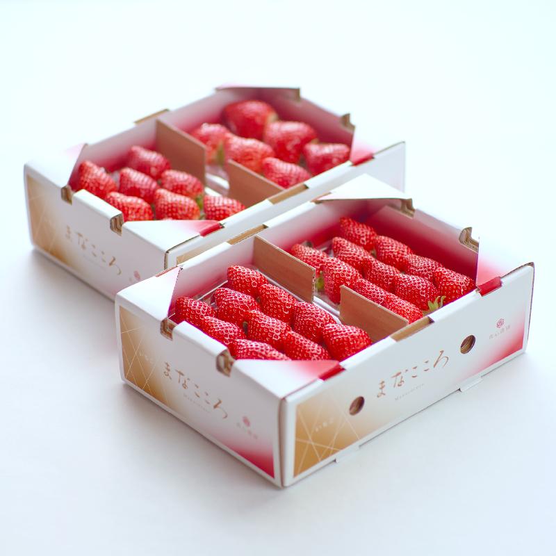 まなこころ・葵 280g(2段×2パック) 2箱