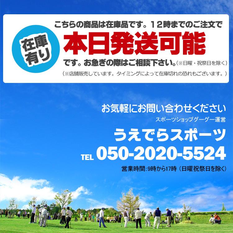 ハタチ ストレートドライブクラブ 3点セット BH2856SS (グランドゴルフ用品)【入門冊子プレゼント】