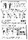 フェミミ イヤホン WXX1500 VMR-AE09同等品 対応機種 VMR-M750 VMR-M800/M700 VMR-M910 フェミミ用別売りイヤホンマイク(両耳用)