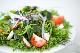 塩 わかめ 【15kg・業務用】三陸産 味噌汁 酢の物 サラダ等にお使いいただけます。【冷蔵便】