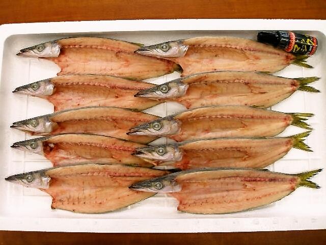 水カマス干物(中)【相模湾産/8枚入】 期間限定 こだわりの干物専門の味