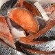 銀鮭 甘塩 切り落とし 1kg 【三陸産原料使用】宮城県産 甘塩銀鮭(養殖) 脂がのっていてとても人気があります【冷凍便】