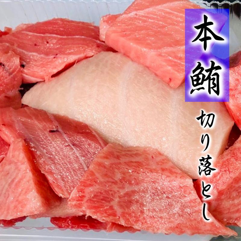 生 本鮪 切り落とし 300g 【畜養・本鮪】 お買い得品!刺身・手巻き寿司・鉄火丼に最適!【冷蔵便】 ※鮮度劣化が早いために関東近県の配送のみになります。