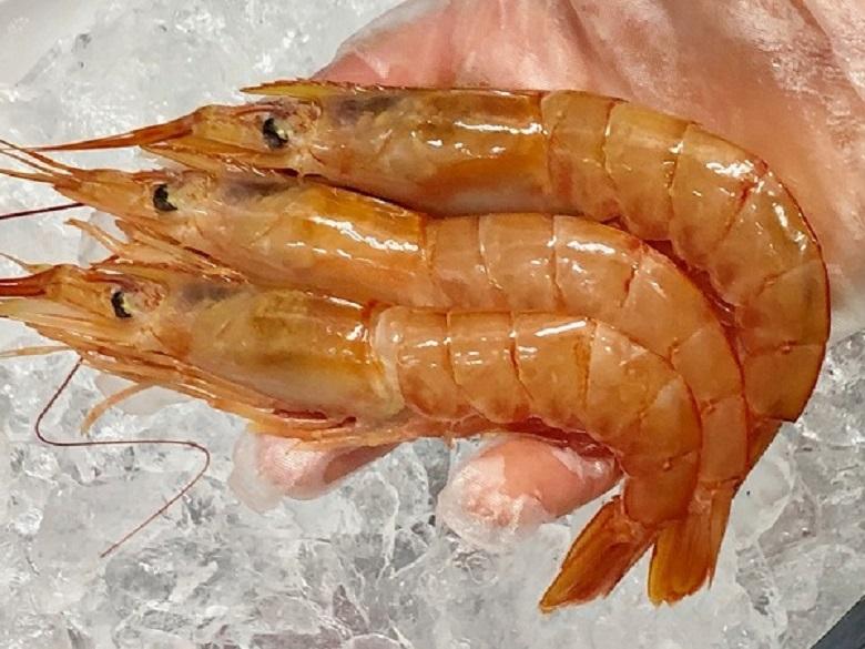 赤 えび  2kg 【サイズ20/30・2kg 約40-60尾】【ボタン海老にも負けない甘さです】刺身・寿司・焼物・揚物などにお使いください【冷凍便】