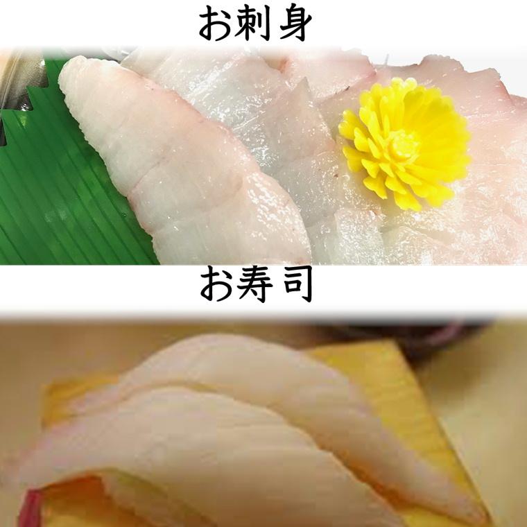 おしつけ ( あぶらぼうず )手切り チルド 1kg 【尾の身】安価でお得です。【幻の魚・うまい・脂あります!】寿司・酢みそ和え・酢漬け・煮付け・お鍋【冷蔵便】