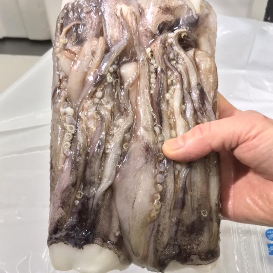 いかげそ(赤イカ) 5kg  いか足君 【焼物・揚物・煮物・バーベキューなど用途色々】 国産イカゲソ 【冷凍便】