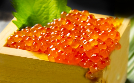 いくら醤油漬け 【1箱500g入り】北海道産の上質ないくらを使用しております。寿司種、丼ぶり物、ちらし寿司に最適 【冷凍便】
