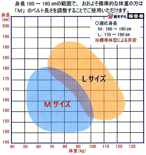 【新規格】 フルハーネス 新規格 墜落制止用器具 ハーネス型安全帯 標準 Mサイズ 【 Y型 ももワンタッチ】椿モデル HYF2  ブラック