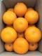 那須さんの「紅八朔」 約5.7kg箱入 2L〜3L 15玉入り
