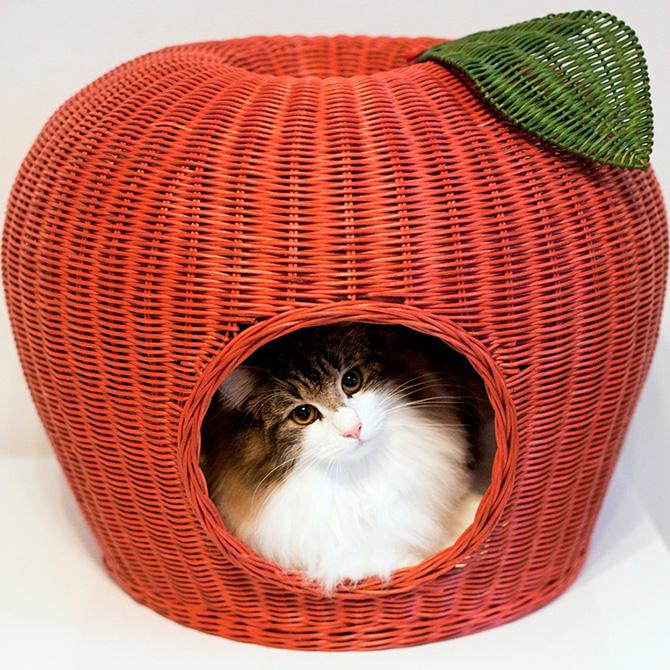 猫 ベッド ラタン ポムハウス