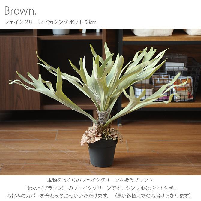 Brown. ブラウン フェイクグリーン ビカクシダ ポット 58cm