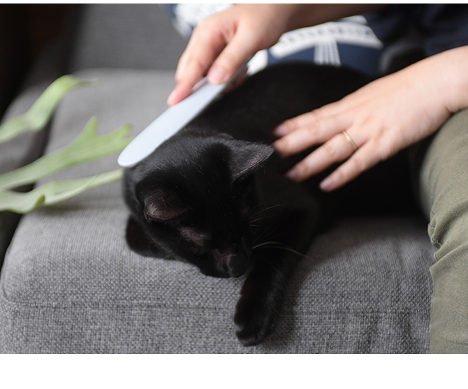 CAT GROOMER ねこじゃすり