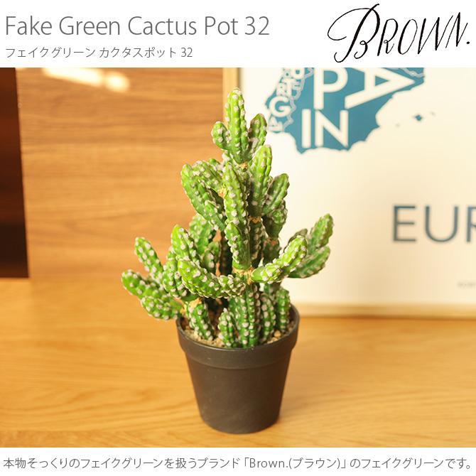 Brown. ブラウン フェイクグリーン カクタスポット 32