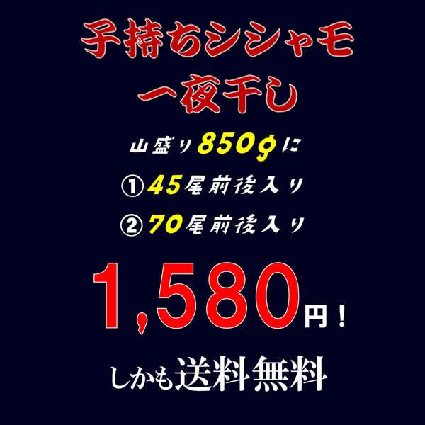 【訳あり】 子持ちシシャモ 850g