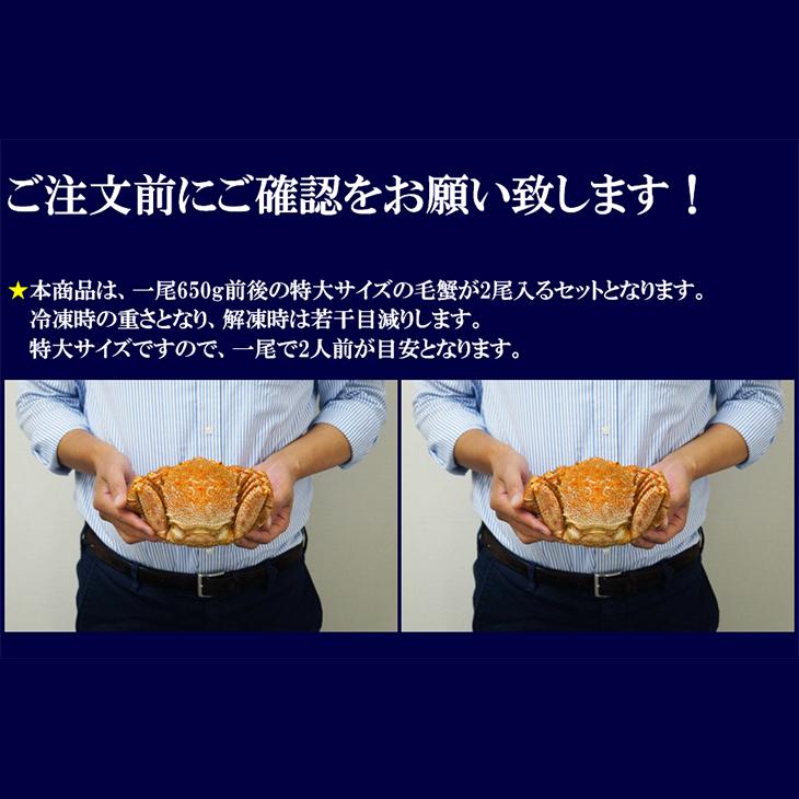 紋別産 特大紋別毛蟹 2尾入