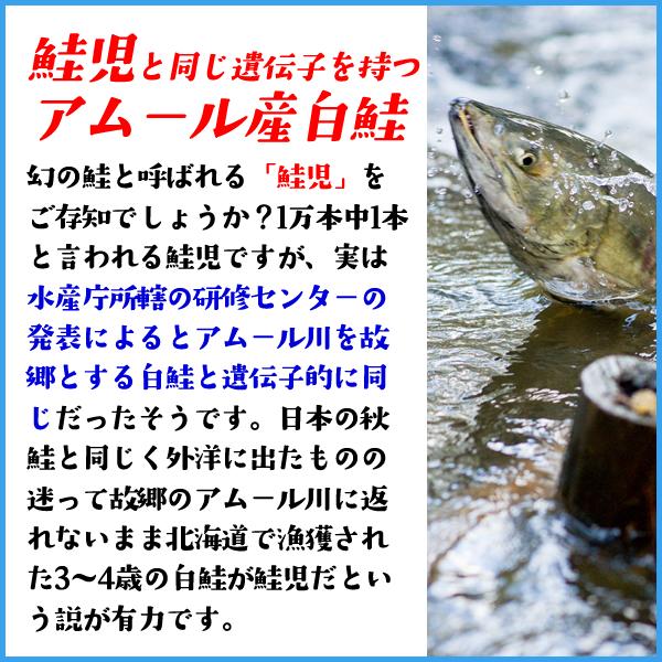 秋鮭骨取り切り身 100g前後×5枚