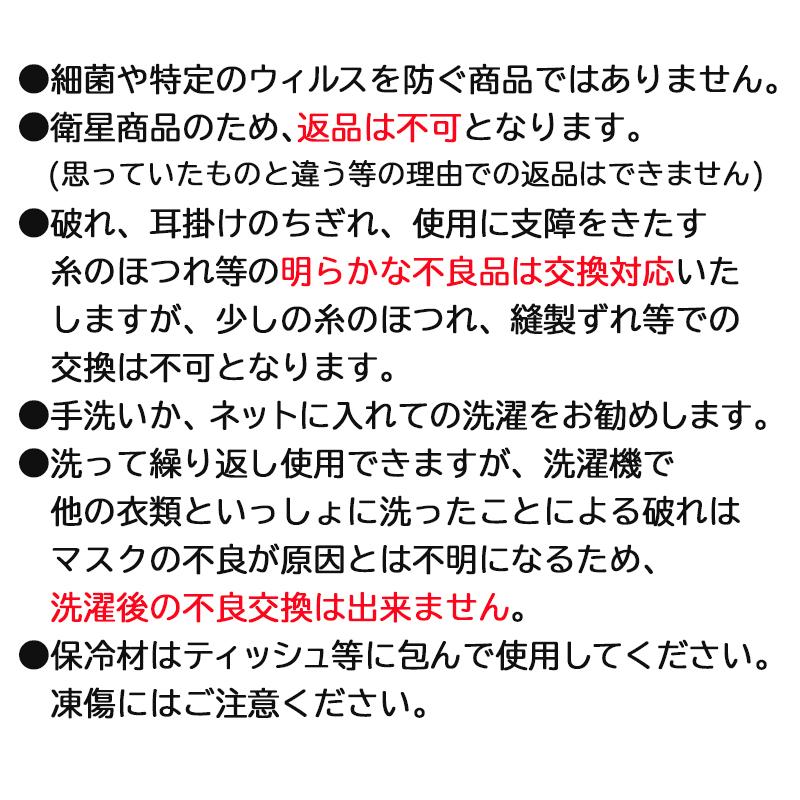 【30枚セット】接触冷感マスク 夏用クールマスク 保冷剤付 【返品交換不可】