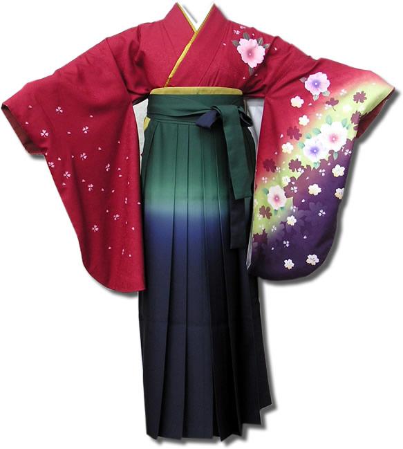  送料無料 卒業式レンタル袴フルセット-539