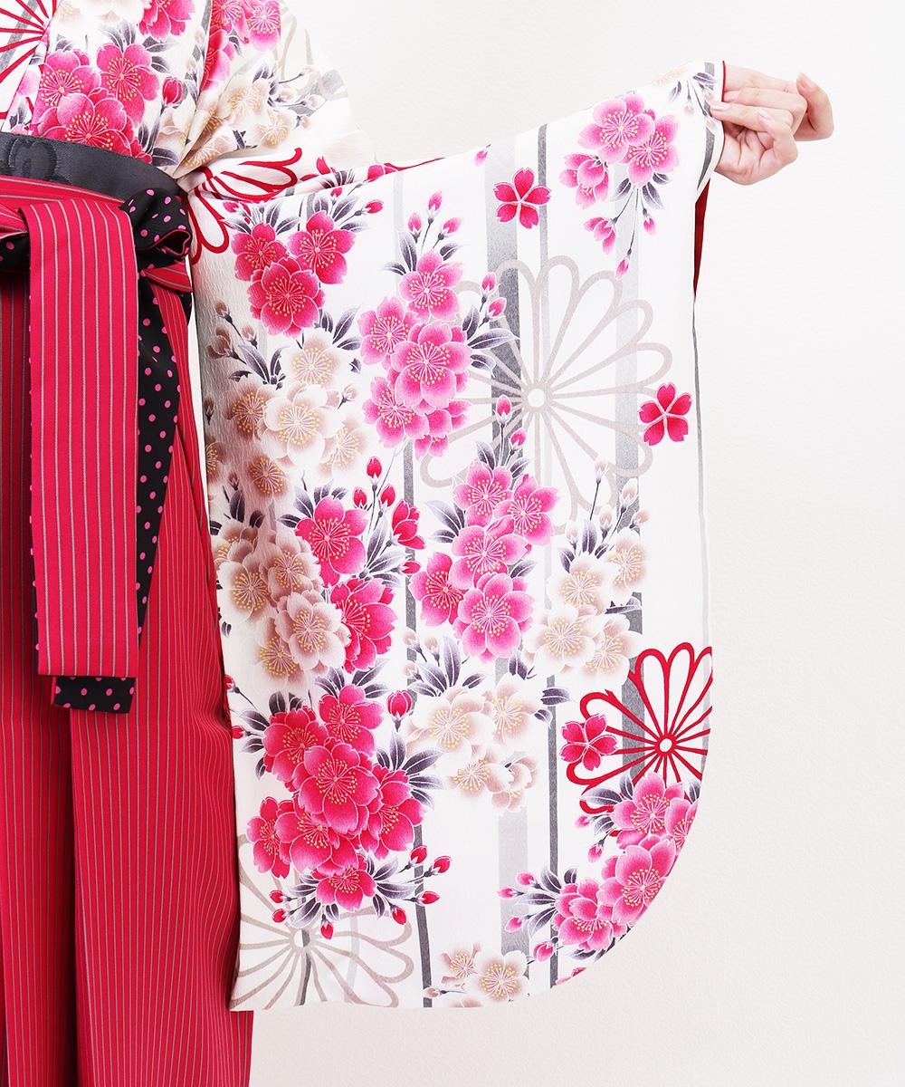 |送料無料|【対応身長157cm〜165cm】【キュート】卒業式レンタル袴フルセット-852|マルチカラー|花柄|桜|ストライプ|白|ピンク|