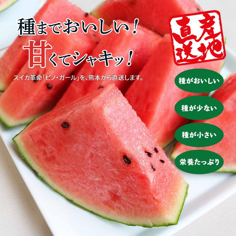 【産地直送】熊本産 種まで食べられる こだま春スイカ「ピノ・ガール」(1玉)