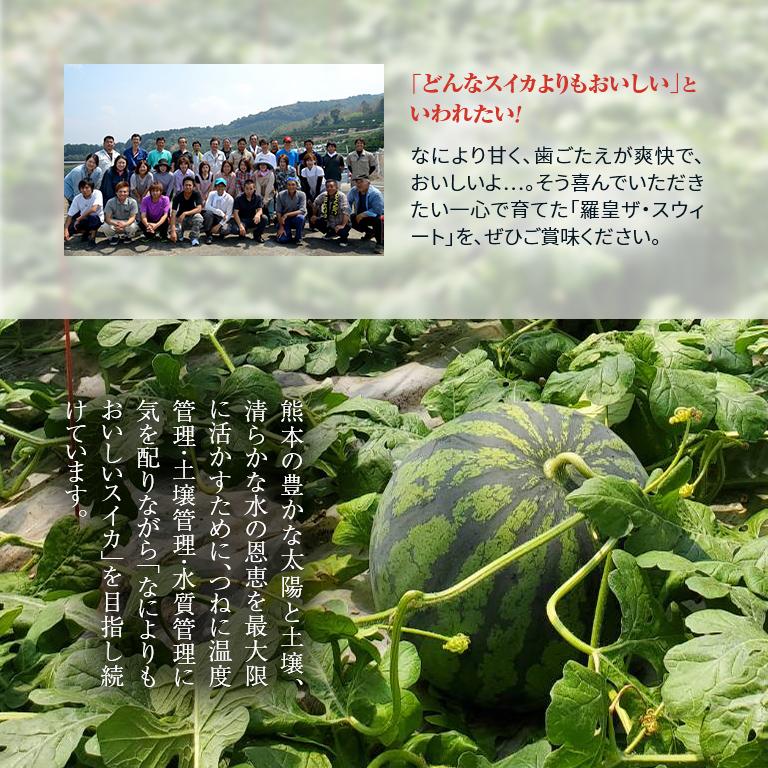 【産地直送】熊本産 味咲すぅいーと 春スイカ「羅皇ザ・スウィート」(M~L 約5~7kg)