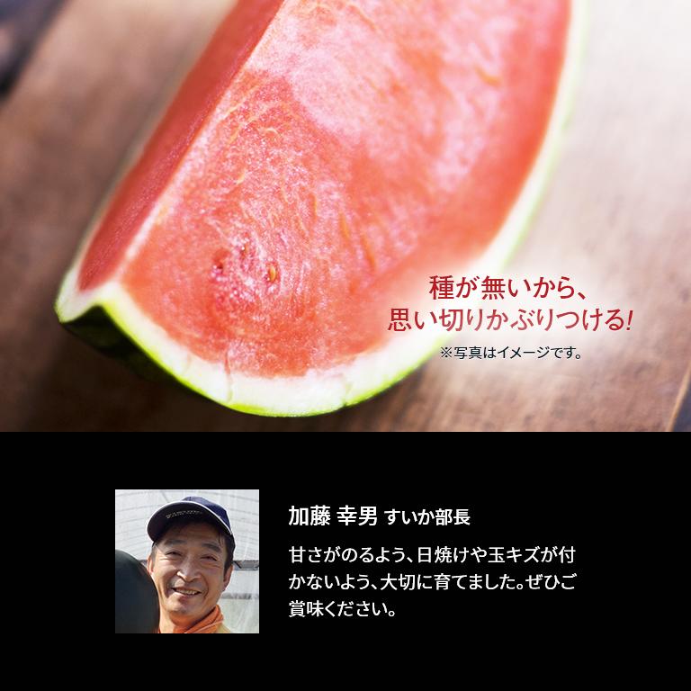 【産地直送】熊本産 味咲すぅいーと 春スイカ「羅皇ザ・スウィート」(2L 約7~8kg)