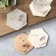 【名入れ コースター ヤシの木】 珪藻土・木製