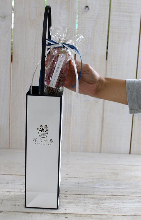 手土産用に・同梱OK「花うるるハーバリウム専用ギフトバッグ 1本用」