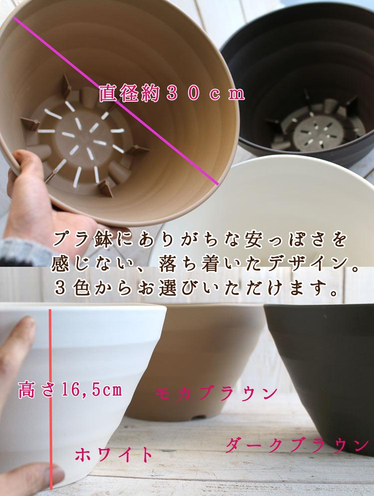 ビオラの寄せ植え「いちごショート(プランターver)」(3色から選べるおしゃれ プランター)開花期:今から春まで