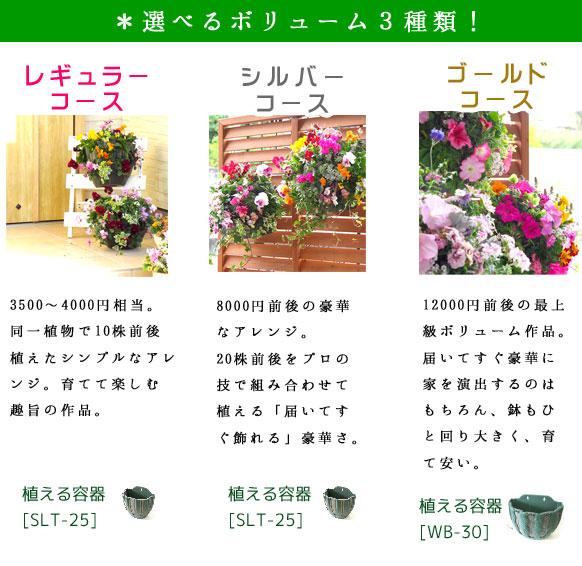 【new!お試し3回コース】「ハンギングバスケット定期便〜レギュラー」(3ヶ月〜半年間)