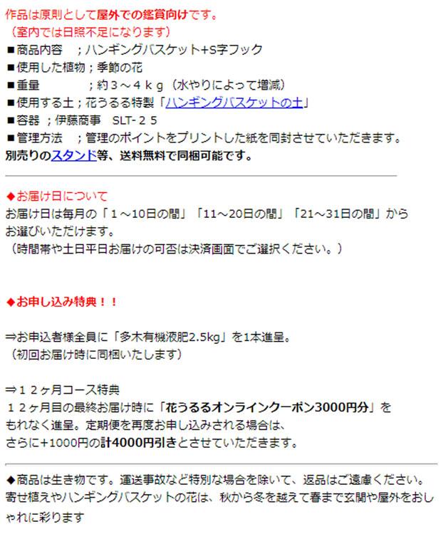 「ハンギングバスケット定期便〜シルバー」【12ヶ月コース】